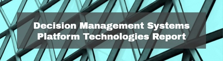 Update to the Decision Management Systems Platform Technologies Report